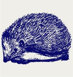 Hedgehog animal vector image