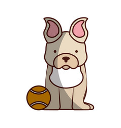 cute dog mascot with tennis ball vector image