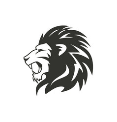 heraldic lion logo design isolated on white vector image