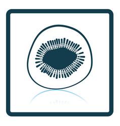icon of kiwi vector image