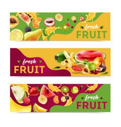 Realistic fruits banner set vector