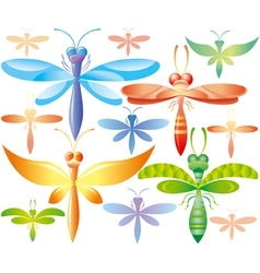 Set of colorful dragonflies vector