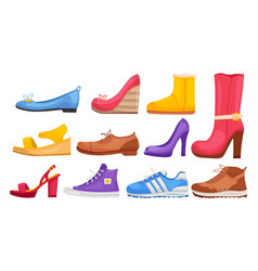 shoe collection vector image
