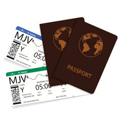 two international passports with boarding pass vector image
