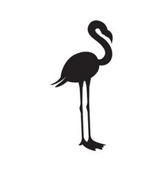 Black silhouette or contour flamingo flat vector