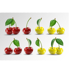 Cherry realistic fruit icons set vector