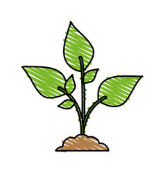color crayon stripe cartoon plant with leaves in vector image