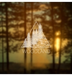 logo with forest trees vector image