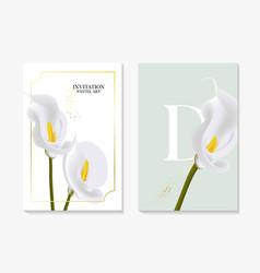 set elegant calla lily brochure card vector image