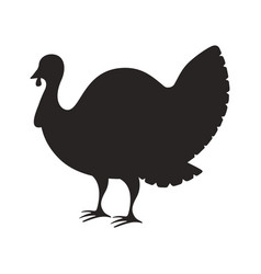 silhouette turkey on white background vector image