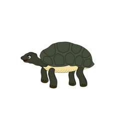 turtle animal cartoon vector image