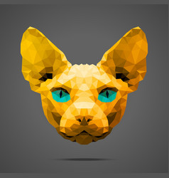 Sphynx cat low poly Gold Side light vector image vector image