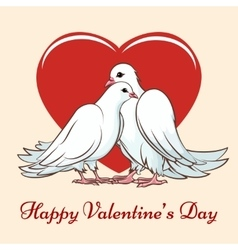 Valentine day couple dove vector image vector image
