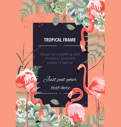 Exotic pink flamingo birds with leaves and herbs vector