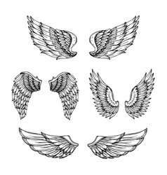 hand drawn wing sketch angel wings with feathers vector image