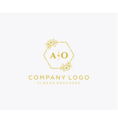 Initial ao letters decorative luxury wedding logo vector
