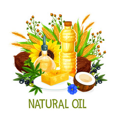 Natural oils of plant origin seasonings vector
