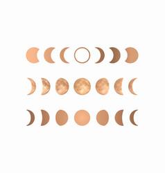 Phases gold moon boho moon vector