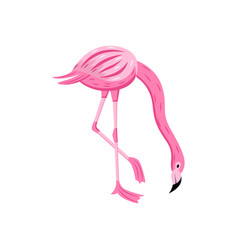 pink cute flamingo modern color cartoon character vector image