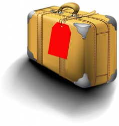 traveled suitcase with travel sticker vector image
