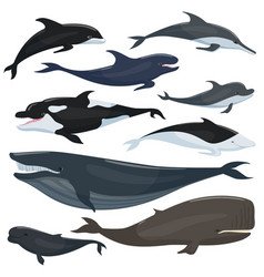 nautical collection of different underwater big vector image