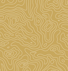 Topographic Map Pattern vector image