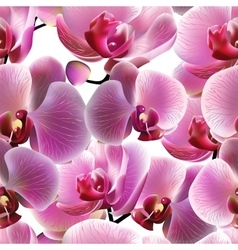 Orchid seamless pattern EPS10 vector image vector image