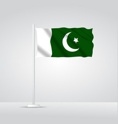 3d realistic pakistan flag waving vector image