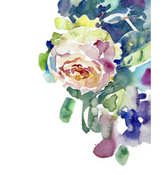Original watercolor painting of pink rose vector