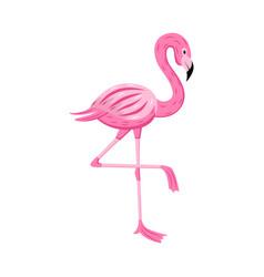 pink cartoon flamingo isolated on white background vector image