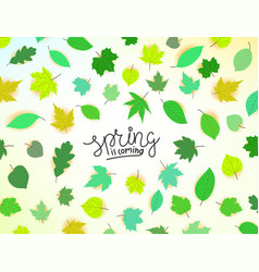 Spring is coming concept with leaves vector
