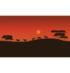 Zebras on savanna at sunset vector