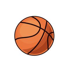 basketball ball sport play equipment image vector image vector image