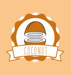 fresh coconut natural fruit drawn image dotted vector image