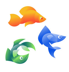 Orange blue and green fish vector
