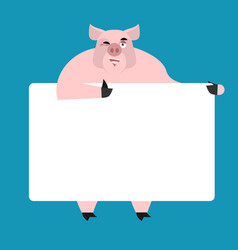 pig holding banner blank swine and white blank vector image