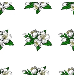 seamless pattern flowers and leaves apple vector image