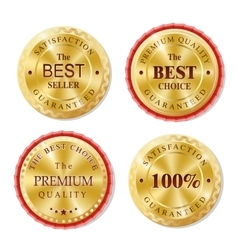 Set of golden metal badges vector image