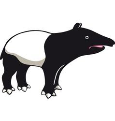 Tapir vector