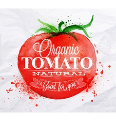 Tomato watercolor poster vector