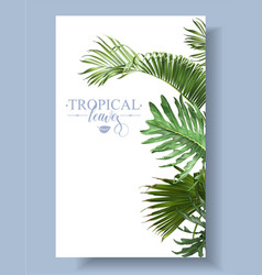 Tropical leaf border vector