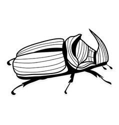 Rhinoceros beetle tattoo or for T-shirts vector image vector image