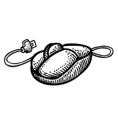 cartoon image of computer mouse icon vector image vector image