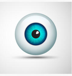 eye ball vector image
