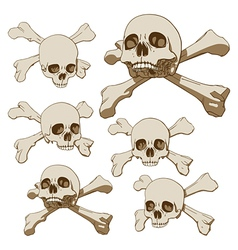 human skull with crossbones vector image vector image