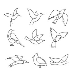 Birds continuous line drawing elements set vector