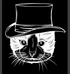 Cat gentleman in a hat in black background vector
