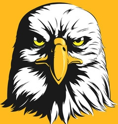 Eagle head front view cartoon vector