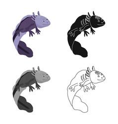 Isolated object lizard and axolotl logo set vector