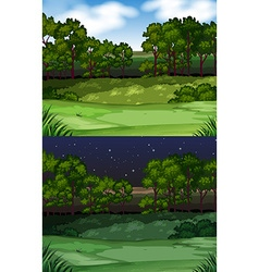 Nature scene with field and trees vector image